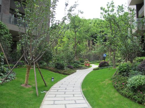 公司是浙北地区园林绿化行业的