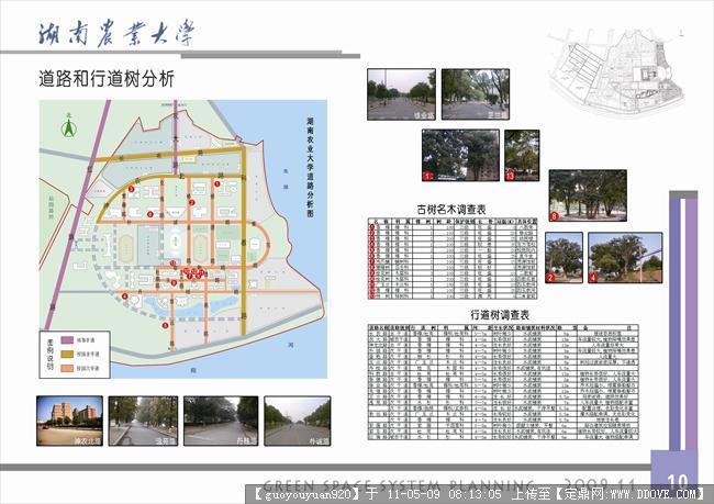 设计 校园景观 校园绿地规划