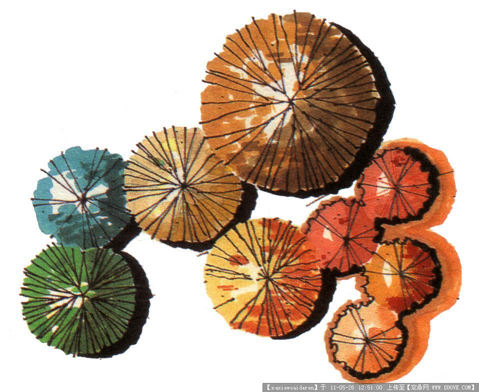 ps平面植物素材图片