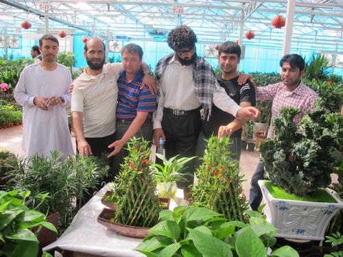 技术/阿富汗等9国政府农业官员参观一四三团花卉市场